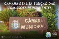 CÂMARA REALIZA ELEIÇÃO DAS COMISSÕES PERMANENTES